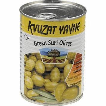 Kvuzat Yavne Green Suri Olives Whole In Garlic 19 Oz. Pk Of 3.