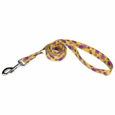 Country Brook Design® 5/8 Inch Purple April Blossoms Dog Leash - 6 Foot