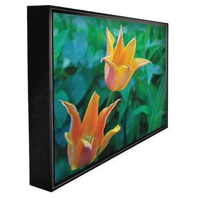 PEERLESS CL-4765 Outdoor HDTV,47 in,60 Hz, LED