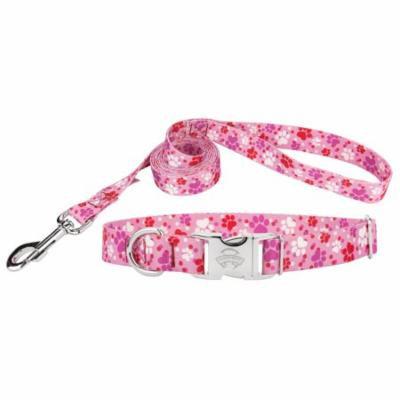 Country Brook Design® Puppy Love Premium Dog Collar & Leash