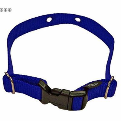Perimeter XXS Dog Fence Replacement Strap 2 Hole 5/8