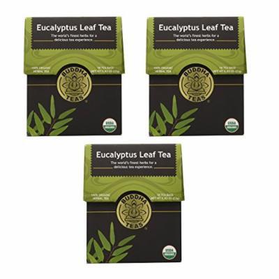 Organic Eucalyptus Tea - Kosher, Caffeine Free, GMO-Free - 18 Bleach Free Tea Bags