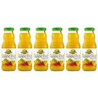 Brazil Gourmet Cashew Nectar 10oz (Pack of 06)