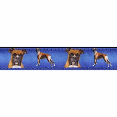 Country Brook Design® 1 Inch Boxer Ribbon Dog Leash-4 Foot-Limited Edition