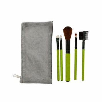 Cosmetic Brush Set with Mesh Zipper Case, Pack of 4