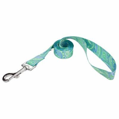 Country Brook Petz® 1 Inch Green Paisley Featherweight Dog Leash - 2 Feet