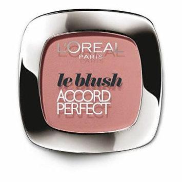 Loreal Le Blush True Match Blush 95 Rose Amour
