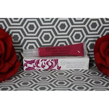 Beauticontrol Holiday Lip Gloss - Chocolate Berry Lot of 2