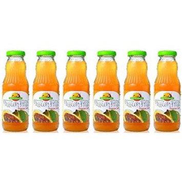 Brazil Gourmet Passion Fruit Nectar 10oz (Pack of 06)