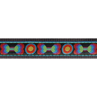 Country Brook Design® 1 Inch Funkadelic Bones Ribbon Dog Leash Limited Edition - 2 Foot