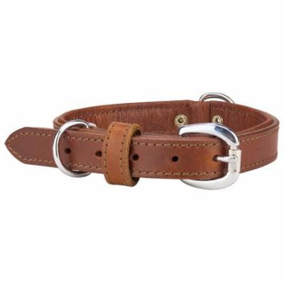 Angel Dallas Leather Dog Collar