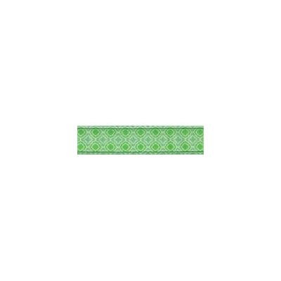Country Brook Design® 3/4 Inch Minty Chic Ribbon Dog Leash-2 Foot-Limited Edition