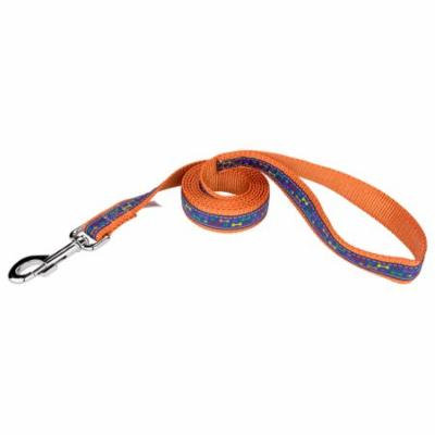 Country Brook Design® 1 Inch Rainbow Paws and Bones Ribbon on Orange Dog Leash Limited Edition - 4 Foot