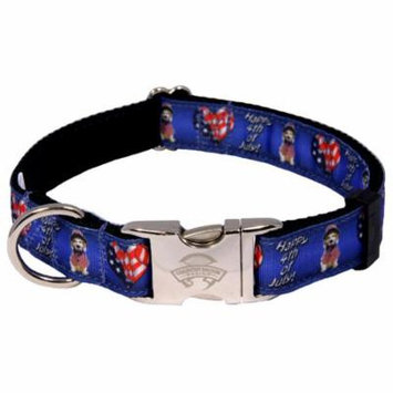 Country Brook Design® Premium 4th Of July Ribbon Dog Collar Limited Edition