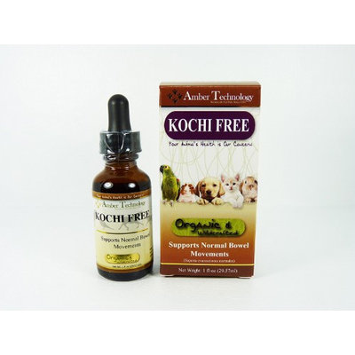 Amber Technology Kocci Free