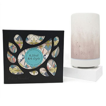6 Synergy Blends & 6 Singles Set + Mauve Ombre Diffuser by Edens Garden