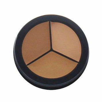 Purely Pro Cosmetics Concealer Trio, Warm Front, 0.001 Ounce by Purely Pro Cosmetics