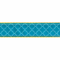 Country Brook Design® Classy Chic Ribbon Double Sided Dog Leash