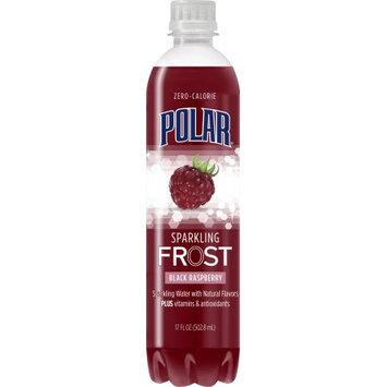 Polar Sparkling Frost Water, Black Raspberry, 17 Fl Oz (Pack of 12)