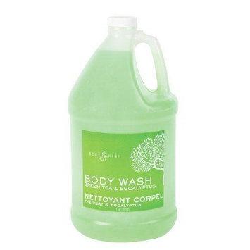 Marianna 56289 Body High Green Tea & Eucalyptus Body Wash, 1 Gallon
