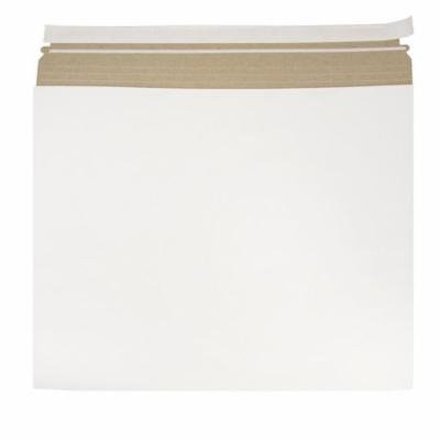 JAM Paper White Expandable Photo Mailer, 17 x 14 x 1, 6/pack