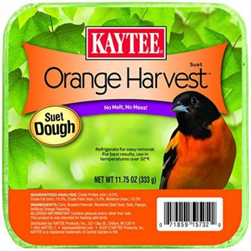Kaytee Products Inc Kaytee Pet Products BKT51120 Kaytee 12-13.5oz Suet Dough Orange