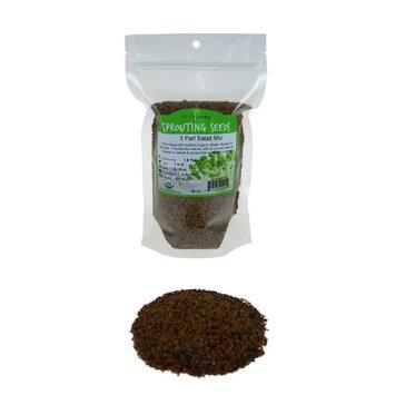 Handy Pantry 3-Part Salad Sprouting Mix - 16 oz - Vegan