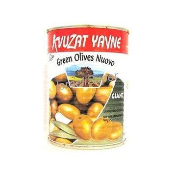 Kvuzat Yavne Green Olives Nuovo Giant 19 Oz. Pk Of 3.
