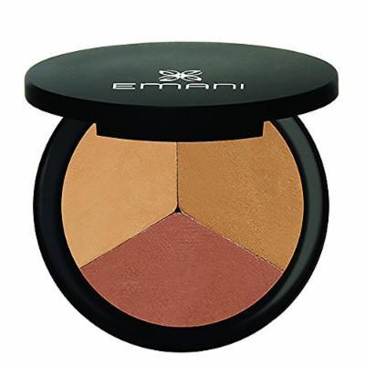 EMANI Vegan Cosmetics Trio Brow Colors 402, Blonde Brown, 0.14 Ounce