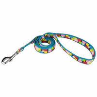 Country Brook Design® 1 Inch Spring Daisies on Ice Blue Double Sided Leash - 6 Foot