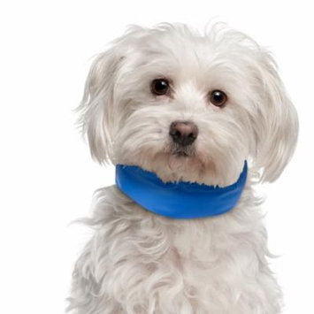 Cooling Pet Dog Collar Up to 11 inches Blue