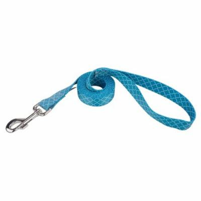Country Brook Design® 1 Inch Classy Chic Dog Leash - 6 Foot