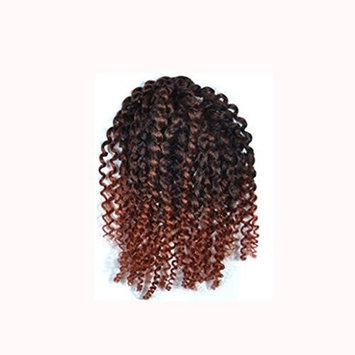 AMA(TM) Afro Kinky Curly Ombre Wigs for Black Women Jerry Curl Short Twist Crochet Braids Bob Synthetic Hair (C)