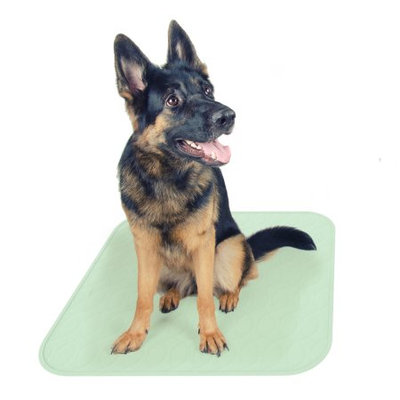 Trademark Global Games Puppy Pads Pet Training Mat- Quick Absorb, Waterproof, Machine Washable, Reusable- Dog Housebreaking, Training, Crate Supplies, 30â x 32â By PETMAKER