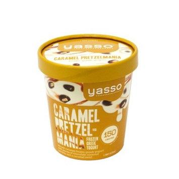 Yasso Frozen Greek Yogurt - Caramel Pretzel Mania - 1pt