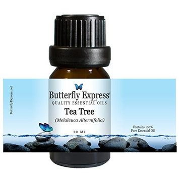 TeaTree Essential Oil 10ml - 100% Pure by Butterfly Express