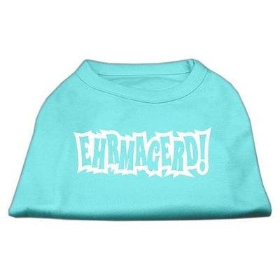 Ahi Ehrmagerd Screen Print Shirt Aqua Lg (14)