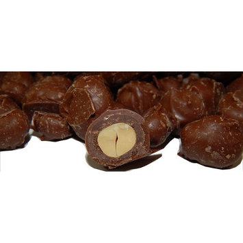 Haviland Milk Chocolate Peanuts | Double Dipped Milk Chocolate Peanuts 2 Pound (32 oz)