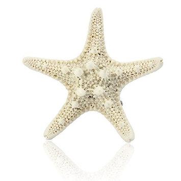 Bigban 1 PC Europe Fashion Women Lady Girls Pretty Natural Starfish Star Beige Hair Clip New (Beige)