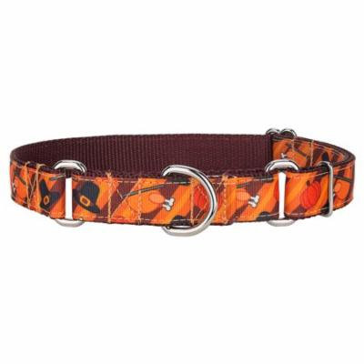 Country Brook Design® Thanksgiving Feast Ribbon Martingale Collar