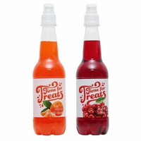 Victorio Time for Treats Snow Cone Syrup 2 Pack Bundle Orange Cream and Cherry