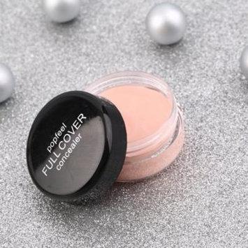 Concealer Hide Blemish Face Eye Lip Creamy Concealer Stick Make-up Concealer Cream FC01