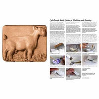 Milky Way Clear PVC Standing Goat Soap Mold Tray - Makes 5.5 oz Bars. Melt & Pour, Cold Process