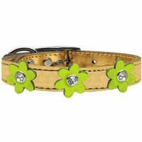 Metallic Flower Leather Collar Gold With Metallic Lime Green Flowers Size 14