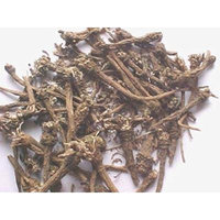 ARKARKARA ROOT Anacyclus Pyrethrum Ayurveda WHOLE - 100g