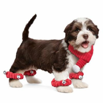 Dog Scarf and Scrunchies Set with Bells, Small
