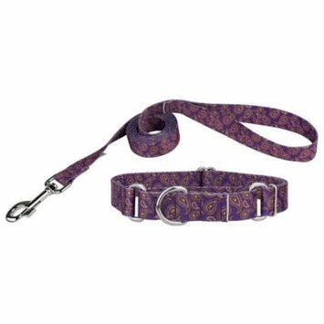 Country Brook Design® Purple Paisley Martingale Dog Collar & Leash