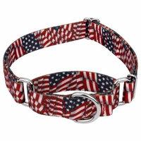 Country Brook Petz™ 1 1/2 Inch Patriotic Tribute Martingale Dog Collar