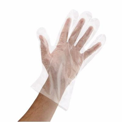 Royal Disposable Poly Gloves, Small, 500 Ct