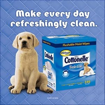 COTTONELLE FRESH® Flushable Moist Wipes